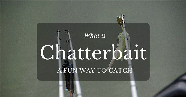 What is Chatterbait
