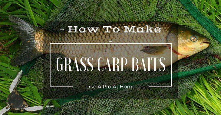 How To Make Grass Carp Baits