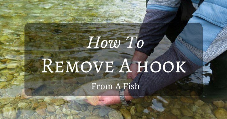 how to remove a hook from a fish