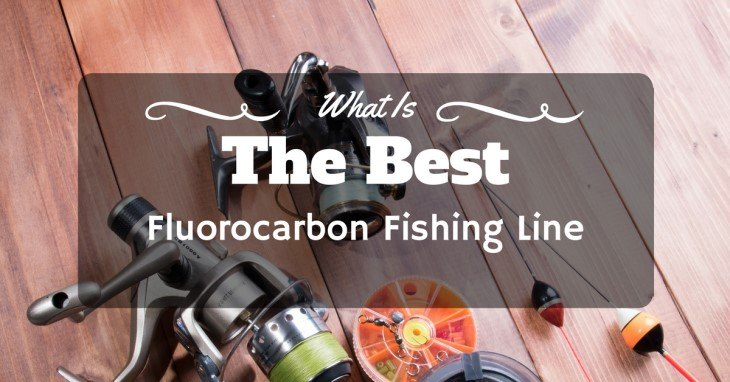 What is the best Fluorocarbon Fishing Line Reviews