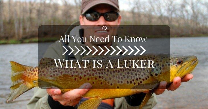 what is luke