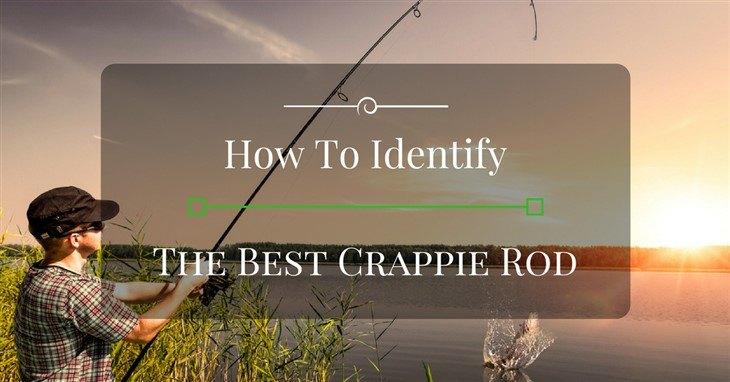 Best Crappie Rod