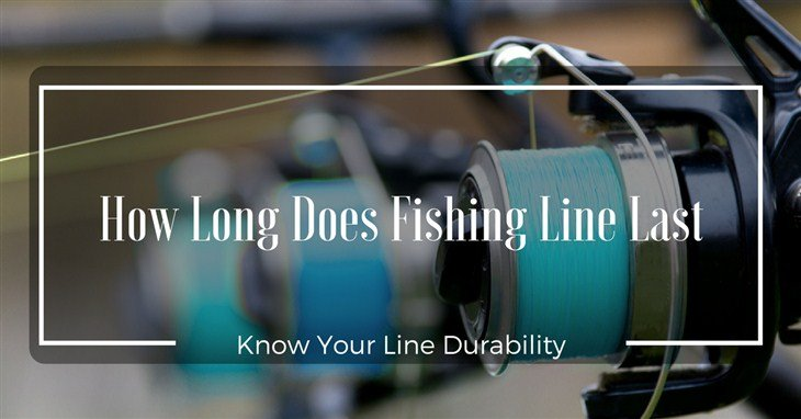 How Long Does Fishing Line Last