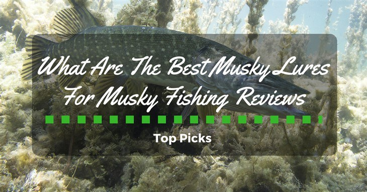 best musky lures for musky fishing reviews