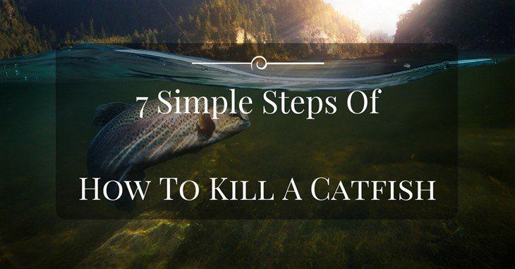 how to kill a catfish