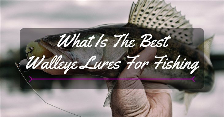best walleye lures reviews