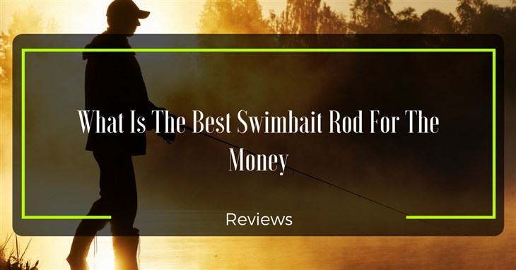Best Swimbait Rod Reviews