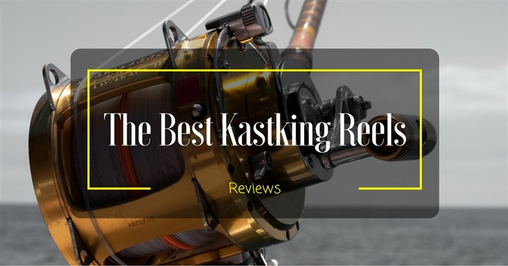 The Best KastKing Reels Reviews
