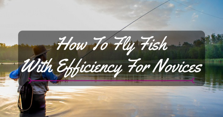 How to fly fish with efficiency for novices